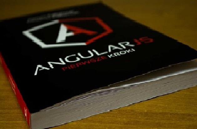 Setup AngularJS Development Company